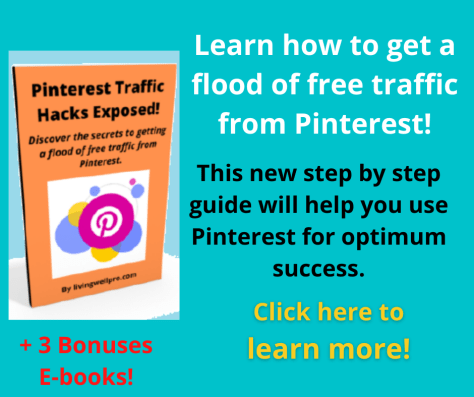 Pinterest Traffic Hacks Exposed! Learn how to get a flood of free traffic from Pinterest! + Get 3 bonus e-books! All for just $5! Click here now to learn more!