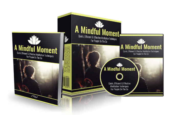 a mindful moment video course