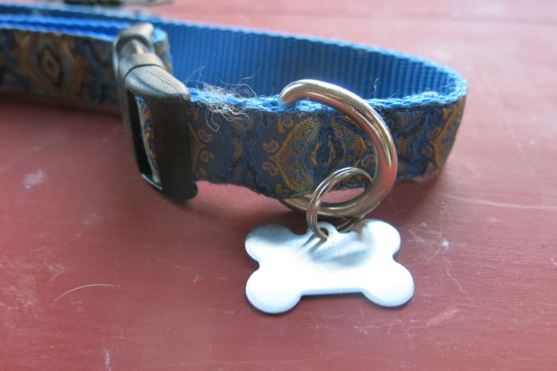 What information is on your Dog's ID Tag?