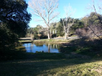 Oakzanita Springs- the pond of many frogs