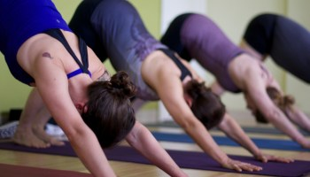 downward-dog-yoga
