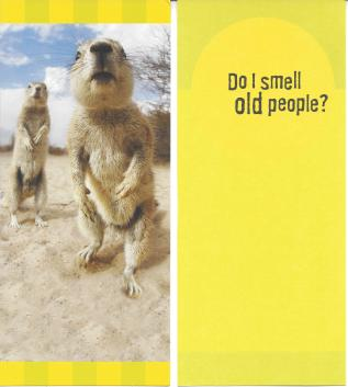 Prairie dog offensive greeting card