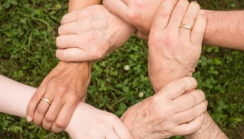 group-of-hands