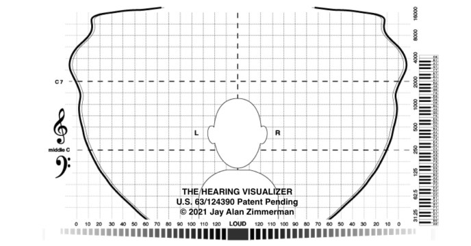 Hearing-visualizer-field