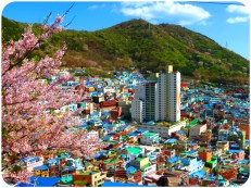 Gamcheon Culture Village (1)
