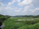Upo Wetlands (7)
