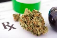 fibro medical mj smoke example