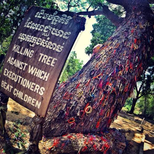 Cambodia Killing Fields, Killing Tree