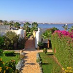 A Lux Week in Sharm El-Sheikh