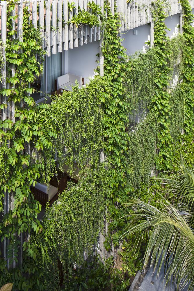 21_green-facade