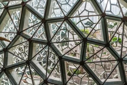 shanghai natural history museum 29