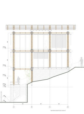 BAMBOO HOUSE _STUDIO CARDENAS6_elevation_sud_est