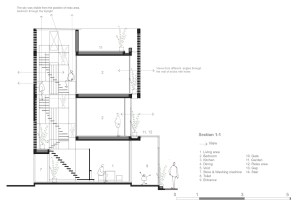 Wasp House_29_Tropical Space_elevations_sections