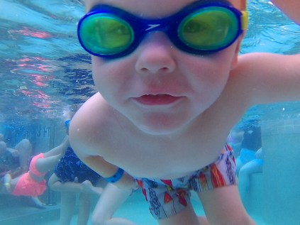 Rex Swims