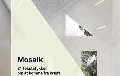 Mosaik – 21 fortællinger om at komme fra kræft til kræfter