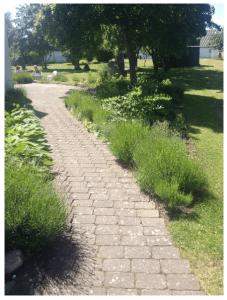 IIT DK path