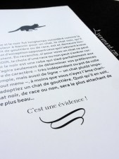 chat-noir-nathalie-semenuik-photo-14