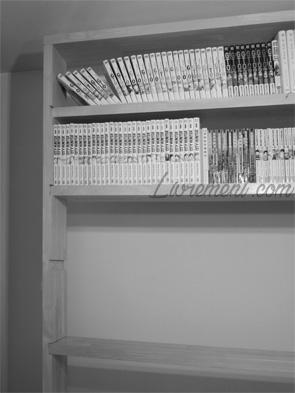 Vidage partiel de bibliothèque