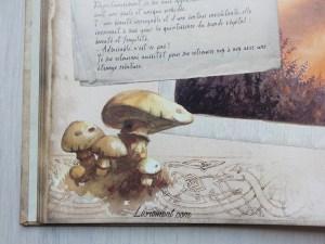 Champignon et entrelacs elfiques dans le livre La petite faiseuse de Sandrine Gestin
