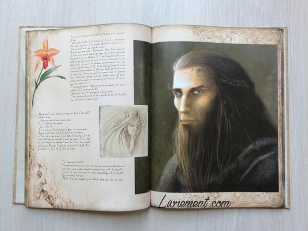 Elfe homme du livre illustré La petite faiseuse de Sandrine Gestin