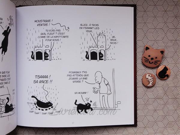 Putain de chat de Lapuss : extrait de la pluie et de la vitre