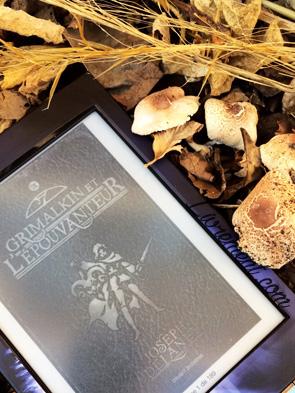 Mise en scène du livre Grimalkin et l'épouvanteur au milieu des champignons