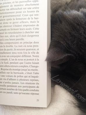 Page de livre et chat assoupi à côté