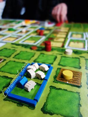 Plateau du jeu Agricola : pâturage de moutons