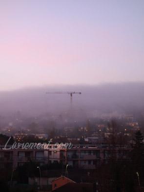 Grue perdue dans le brouillard toulousain
