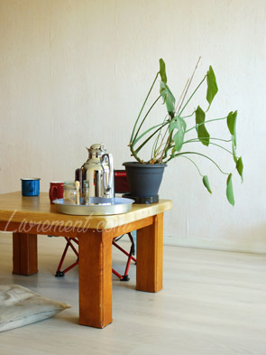 L'essentiel : du thé, de la lecture et une plante