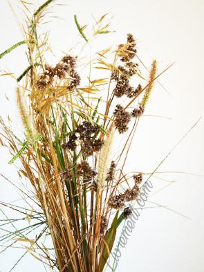 Bouquet d'herbes séchées