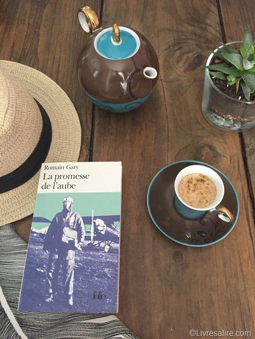 Romain Gary - La promesse de l'Aube Editions Folio