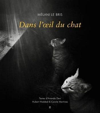 Mélani-Le-Bris-Dans-loeil-du-chat.j