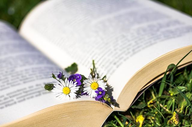 Livres pour être plus écolo - blog littéraire - zéro déchets