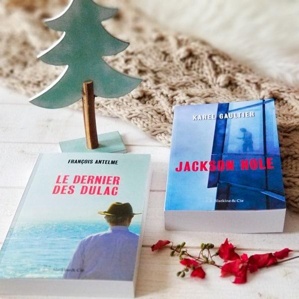 Jackson hole - Karel gaultier - Blog littéraire