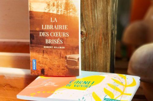 La librairie des cœurs brisés - Robert Hillman