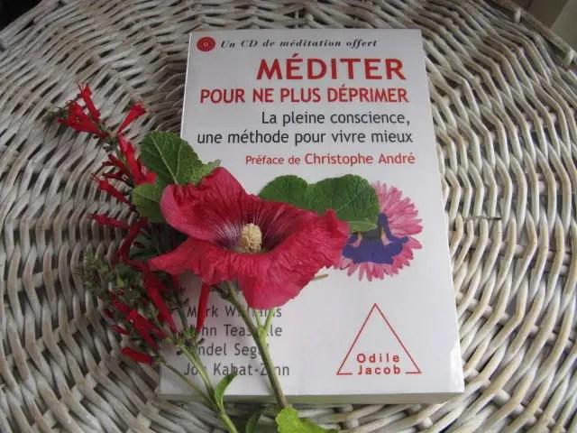 livre méditation pleine conscience pour guérir la dépression