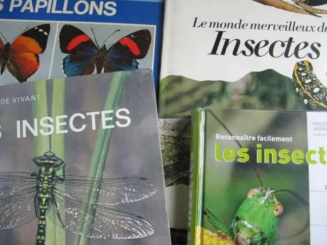 livres sur les insectes
