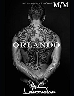 "Couverture de ""Orlando"""