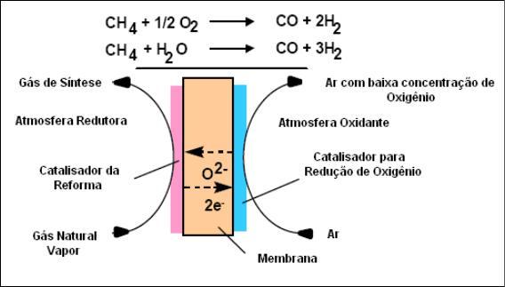 Reforma a vapor do metano em catalisadores à base de níquel produzidos com nióbia