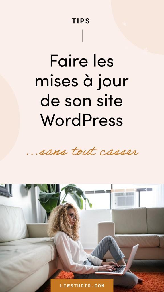 Mettre à jour son site WordPress sans tout casser, faire la mise à jour WordPress, étape par étape, professionnel - Liw studio