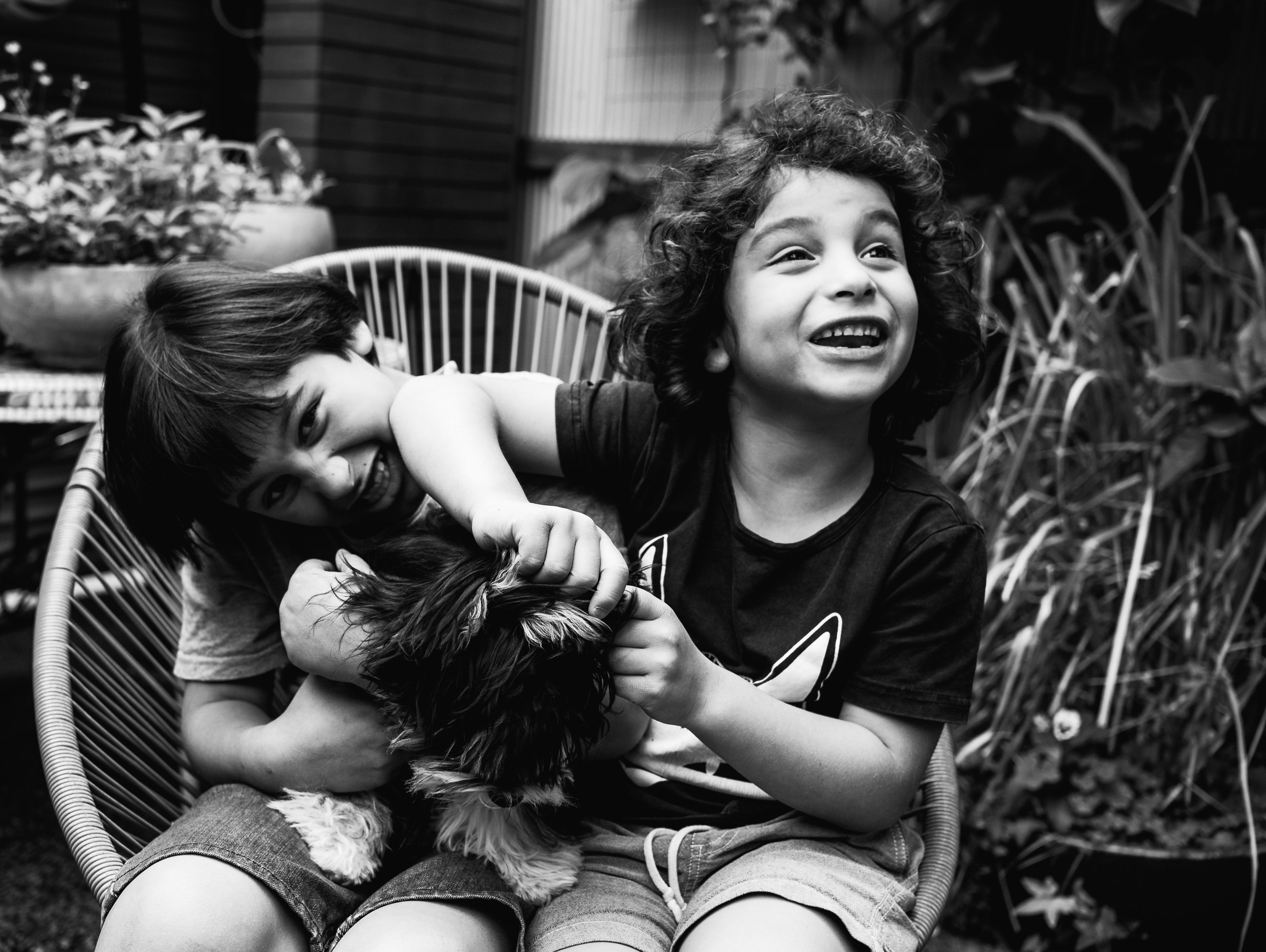 photograph of brothers and their pet dog in Carlton North, Melbourne, Australia