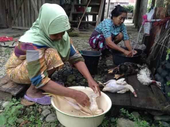 Kak Mi dan Cek Ni mendapat tugas membersihkan ayam dan bebek. Bulu-bulu ayam dan bebek yang baru dipotong mereka bersihkan dengan menggunakan air panas. Sangat telaten