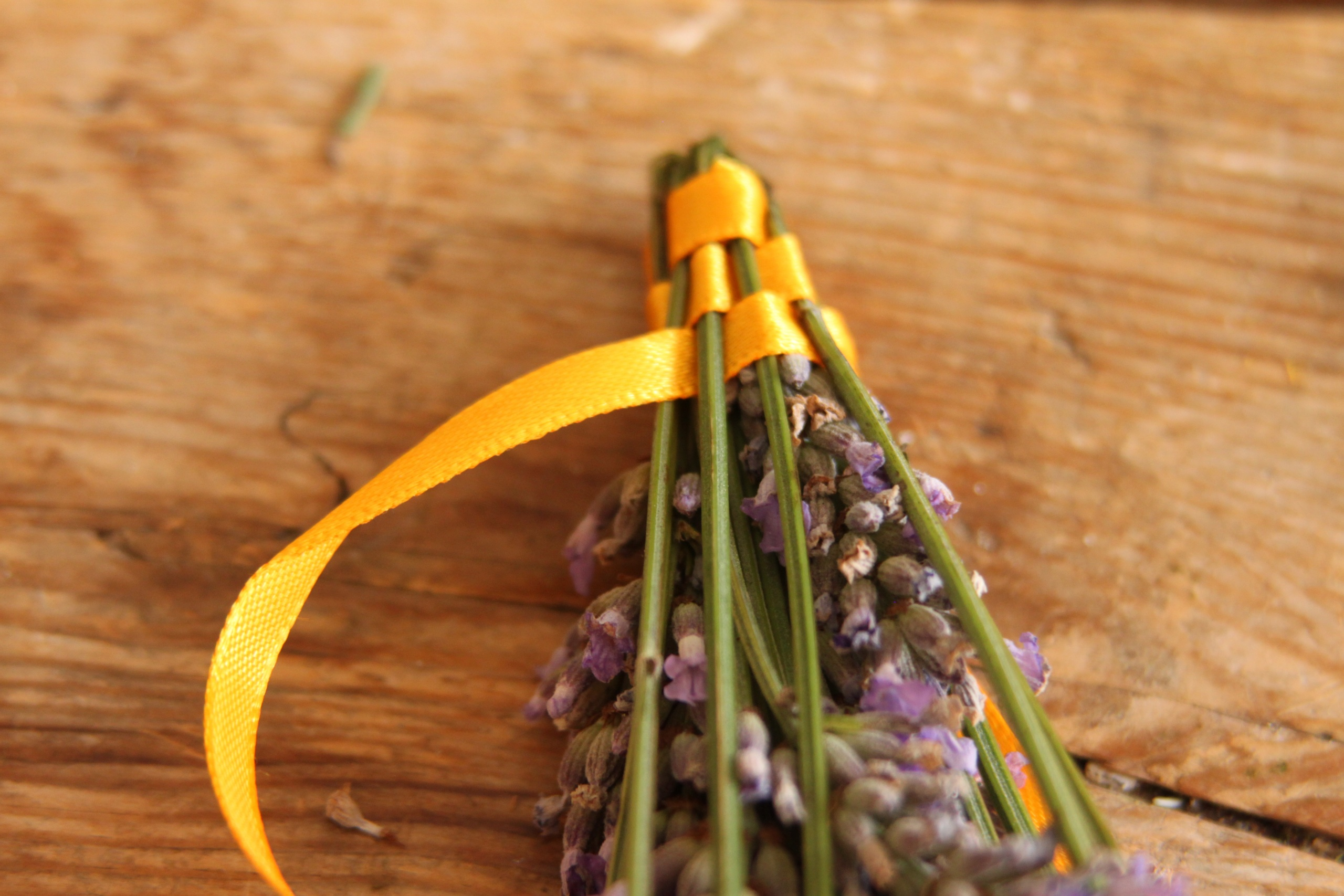 The Everyday Lore Project - Lavender Wands