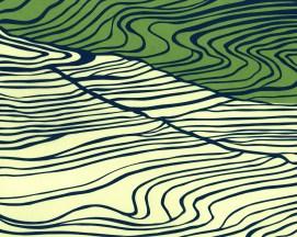 Elizabeth Goss, Fields Abstract