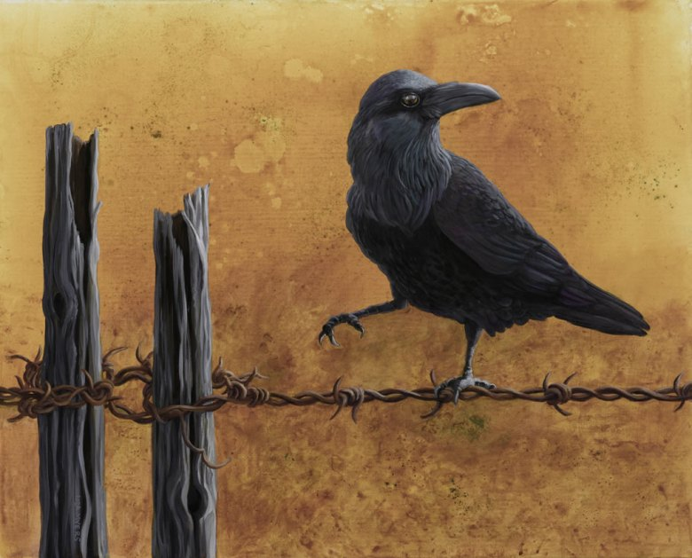 Raven on a Wire.1024