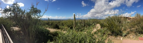 View from the Arizona Sonora Desert Museum, east of Tucson.