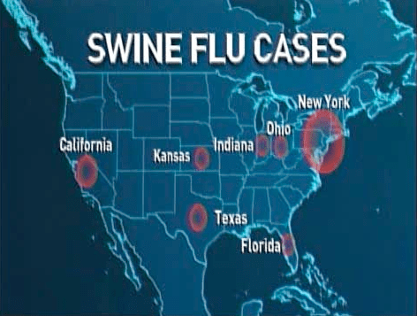 Reported Swine Flu Cases