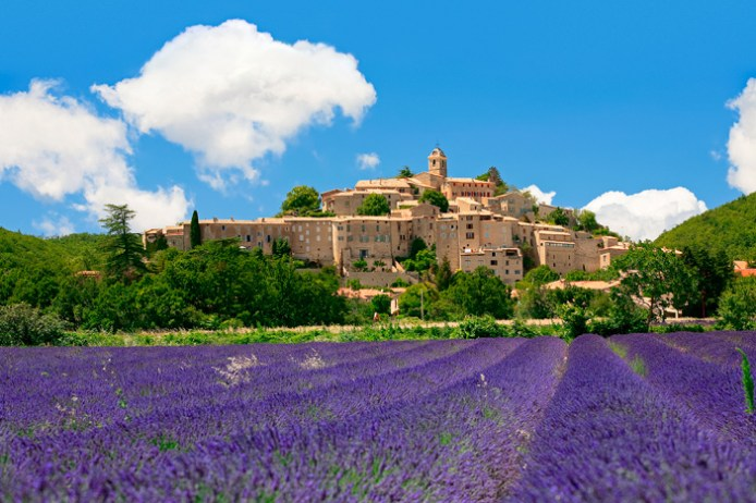 Provence Country Estate Lavender Field