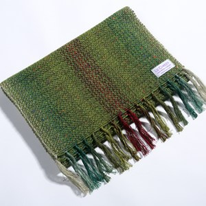kavanagh-scarfcanal-bank-achius-green-liz-christy